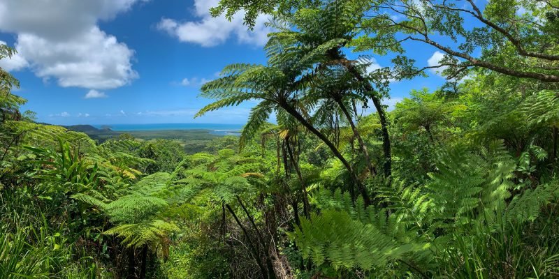 Permanent + secure land protection across Queensland
