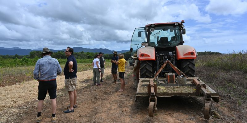 Sustainable agriculture + rural livelihoods