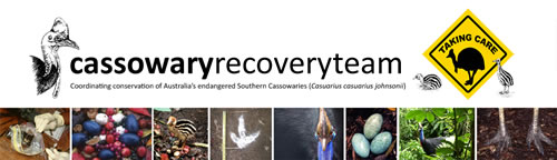 Cassowary Recovery Team